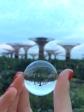 UpsideDown SuperTrees, Singapore