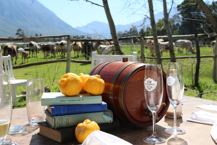 Montpellier de Tulbagh, outdoor brunch seating