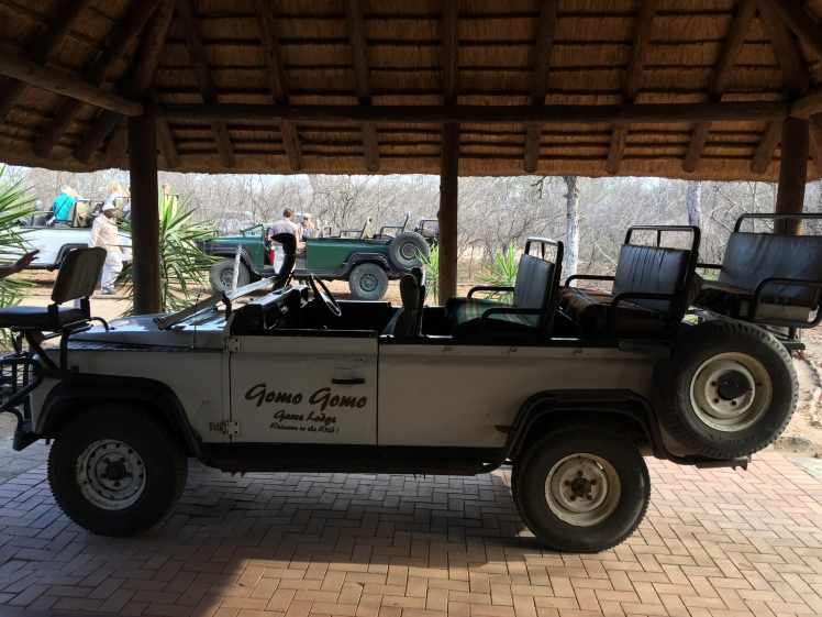 Our Ride @Gomo Gomo Game Lodge, Greater Kruger Park